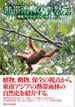 熱帯雨林の自然史