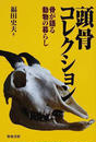 頭骨コレクション 骨が語る動物の暮らし
