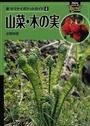 山菜・木の実