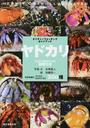 ヤドカリ ひと目で特徴がわかる図解付き 日本各地のヤドカリ オカヤドカリ200種