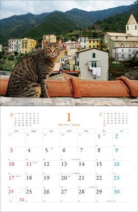 岩合 光昭 カレンダー