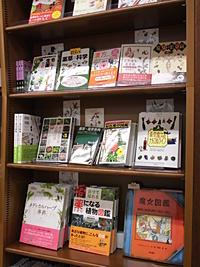 魔女の薬箱~薬草・ハーブ・漢方etc~
