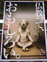 仏教っておもしろい。 ~仏教入門書 + 読者が選んだサンガベスト12~