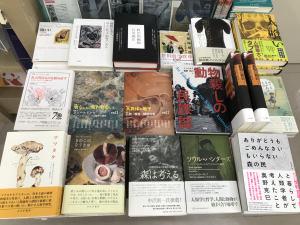 【4F人文】『マツタケ』(みすず書房)を読む ひと・キノコ・動物