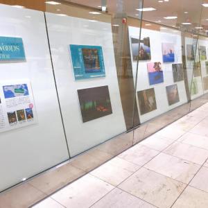 「ノースウッズ 生命を与える大地」パネル展フェア
