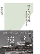 消えゆく沖縄~移住生活20年の光と影~