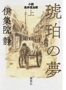 琥珀の夢 小説 鳥井信治郎