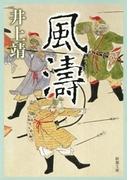 風濤(新潮文庫)