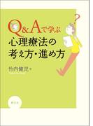 Q&Aで学ぶ 心理療法の考え方・進め方