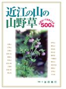 近江の山の山野草 山道沿いで出会える花500種