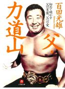 父・力道山(小学館文庫)