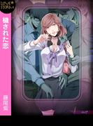 穢された恋~ケダモノたちの通勤電車~ LOVE STORM