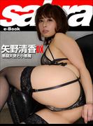 悪戯天使と小悪魔 矢野清香DX [sabra net e-Book]