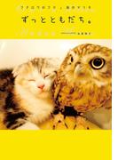 フクロウのフクと猫のマリモ