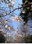 月刊 東京タワーvol.8 花景色 2007-2017
