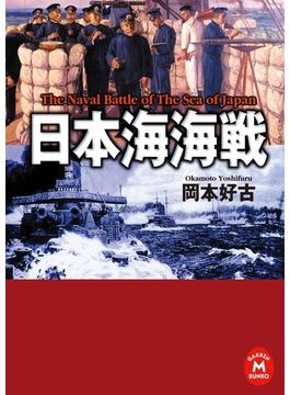日本海海戦(学研M文庫)
