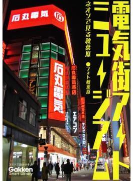 電気街アートミュージアム(学研スマートライブラリ)