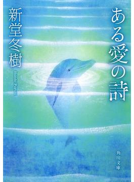 ある愛の詩(角川文庫)