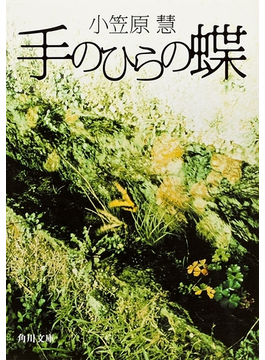 手のひらの蝶(角川文庫)