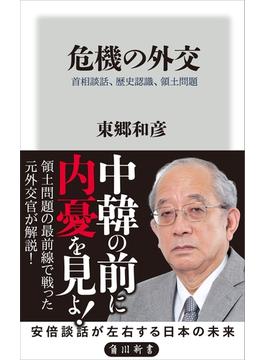 危機の外交 首相談話、歴史認識、領土問題(角川新書)