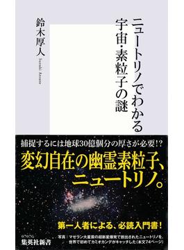 ニュートリノでわかる宇宙・素粒子の謎(集英社新書)