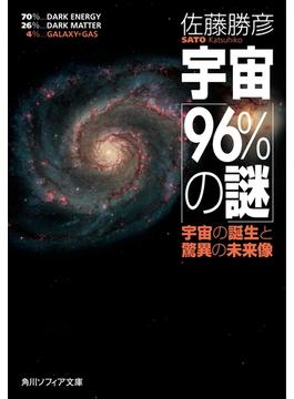 宇宙「96%の謎」 宇宙の誕生と驚異の未来像(角川ソフィア文庫)