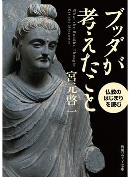 ブッダが考えたこと 仏教のはじまりを読む(角川ソフィア文庫)