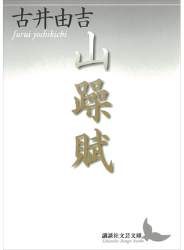 山躁賦(講談社文芸文庫)