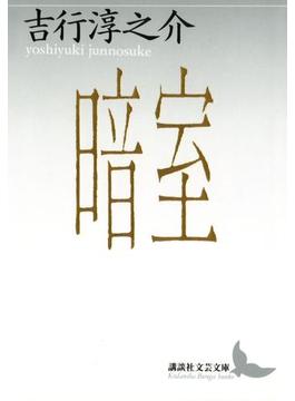 暗室(講談社文芸文庫)