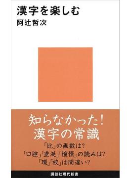 漢字を楽しむ(講談社現代新書)