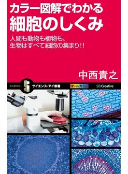 カラー図解でわかる細胞のしくみ(サイエンス・アイ新書)