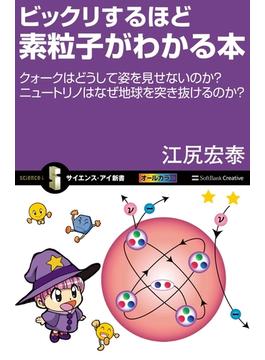 ビックリするほど素粒子がわかる本(サイエンス・アイ新書)