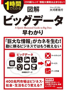 図解 ビッグデータ早わかり(中経出版)
