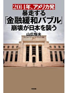 2014年、アメリカ発暴走する「金融緩和バブル」崩壊が日本を襲う(中経出版)
