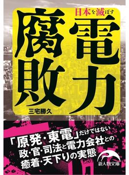 日本を滅ぼす電力腐敗(新人物文庫)