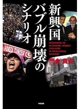 新興国バブル崩壊のシナリオ(中経出版)