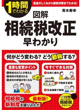 図解 相続税改正 早わかり(中経出版)