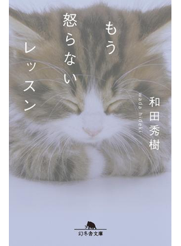 もう怒らないレッスン(幻冬舎文庫)