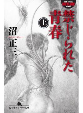 禁じられた青春(幻冬舎アウトロー文庫)