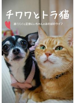 チワワとトラ猫 -凛と正宗にぃちゃんのほのぼのライフ-