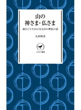 ヤマケイ新書 山の神さま・仏さま(ヤマケイ新書)