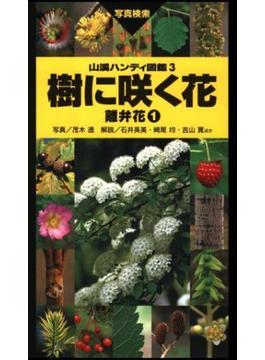 ヤマケイハンディ図鑑3 樹に咲く花 離弁花(1)(山溪ハンディ図鑑)