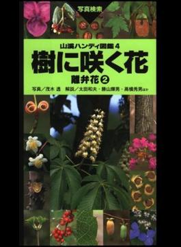 ヤマケイハンディ図鑑4 樹に咲く花 離弁花(2)(山溪ハンディ図鑑)