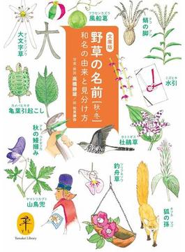 ヤマケイ文庫 野草の名前 秋冬 和名の由来と見分け方(ヤマケイ文庫)