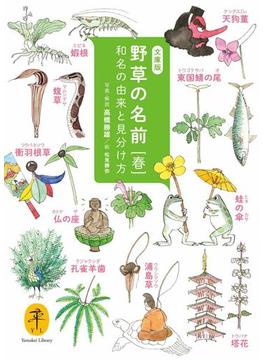 ヤマケイ文庫 野草の名前 春(ヤマケイ文庫)