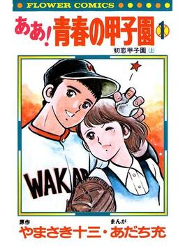 ああ!青春の甲子園(フラワーコミックス)