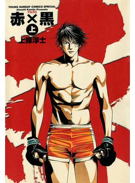 赤×黒(ヤングサンデーコミックス)